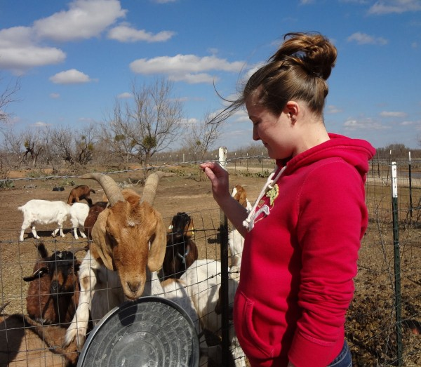 Nicole with Goats