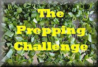 The Prepping Challenge