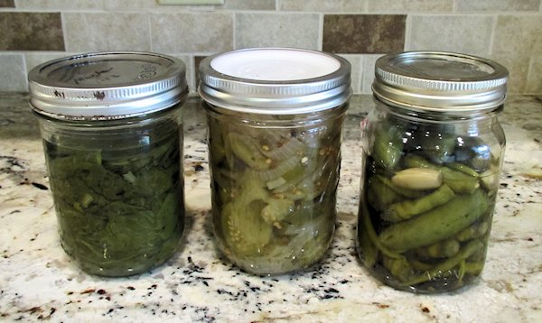 Mustard Greens, Pickled Green Tomatoes, Pepper Sauce