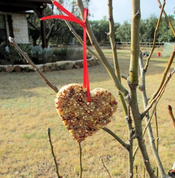 Bird Seed Heart